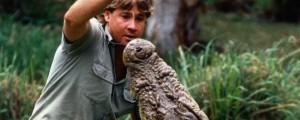 Steve Irwin Death Video