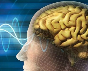 Cognitive Skills Improved By Playing PC Game