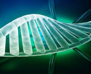 DNA-based electrical circuits