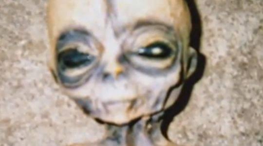 Real Alien