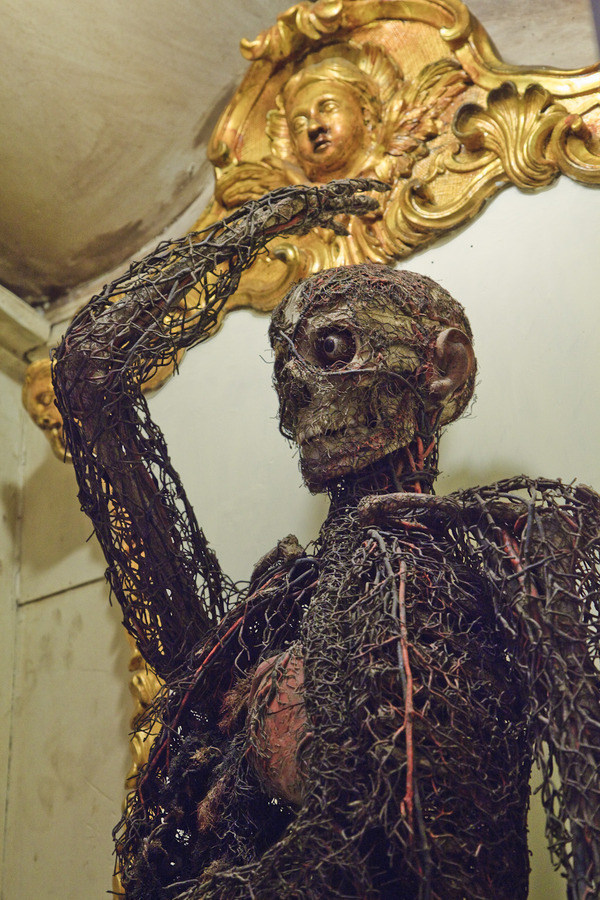 anatomical_machines_sansevero_chapel_2