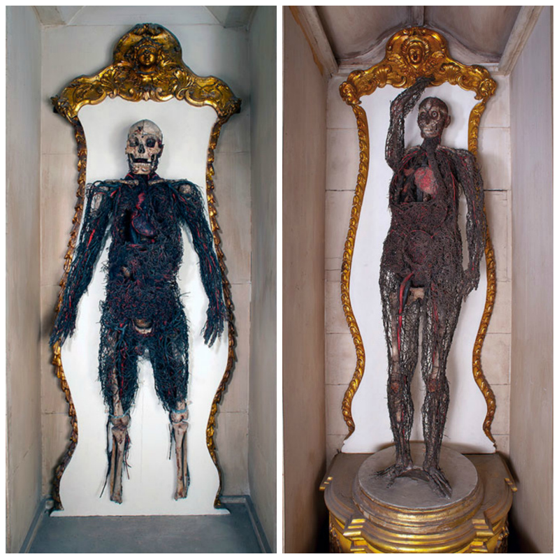 anatomical_machines_sansevero_chapel_collage