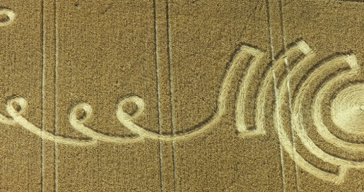 crop_circles_header